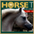 Website Design in Egypt :Horse Times Egypt :The Leading Equestrian Magazine In The Middle East